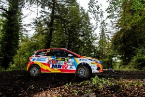 Rally Gales 2019